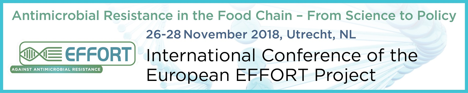 EFFORT International Conference Announcement